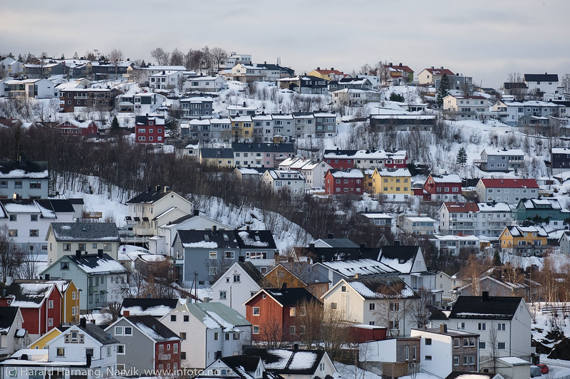Vassvik og Taraldsvik, 12. februar 2020