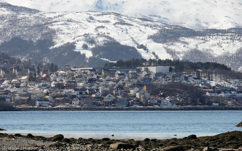 Taraldsvik, 29. april 2020