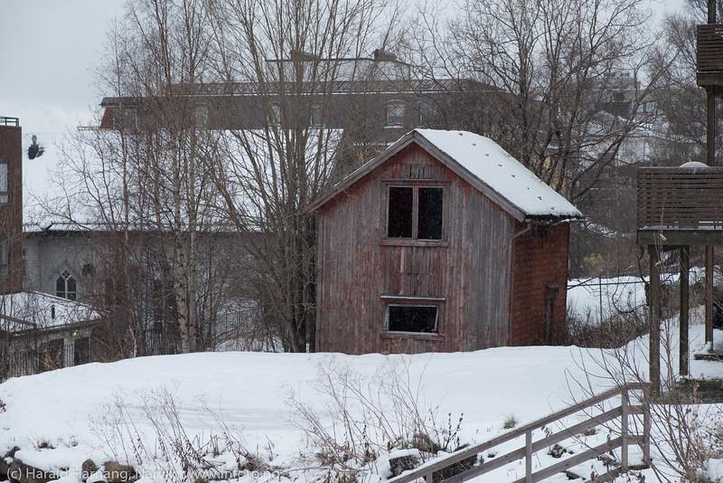 Uthus i bakgården til Håreksgate 59. Foto 1. november 2019.