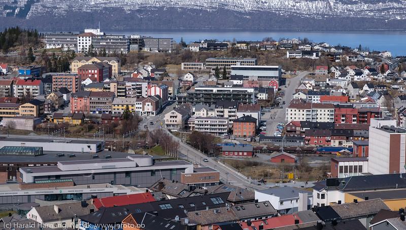 17. mai 2020 - med korona