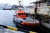 Bjørnfjell, servicebåt for Havnevesenet.