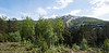 Utsikten på Gulbransons park