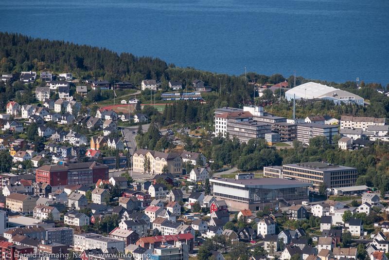 Narvikbilder fra Taraldsvikfjell, 13. august 2019