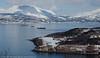 Narvikbilder fra Ankenesfjell, 1. april 2020