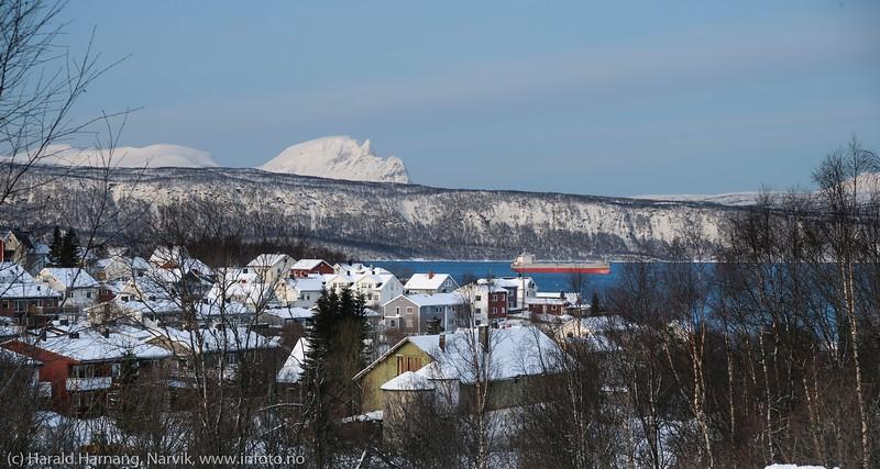 Taraldsvik 26. januar 2020