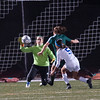 Nashoba Keeper Theresa Don makes a big stop late in the game against W. Springfield. SENTINEL & ENTERPRISE / JIM MARABELLO