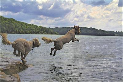 jump2 1