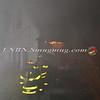 Massapequa F D  House Fire 287 Clocks Blvd 4-8-13-17