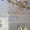 North Bellmore F D  Working Fire 100 Laux Place 11-19-11-16