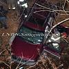 Seaford F D  Car Down Embankment 1-16-12-6