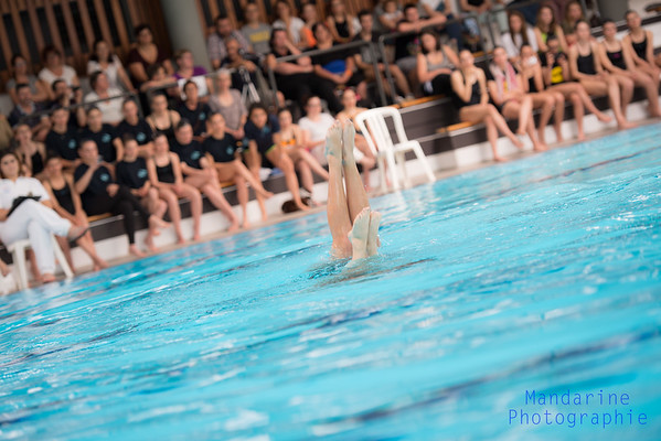 natation synchro-31