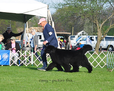 National 2018 Breed