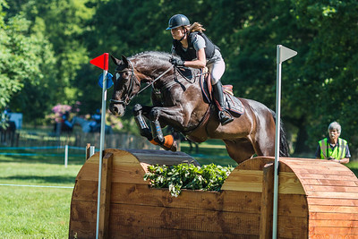 Rider: Nationality: The NetherlandsHorse: Event: Eventing MaarsbergenDiscipline: Eventing - Cross countryClass: L paardenLocation: MaarsbergenCountry: The NetherlandsDate:31 May 2014