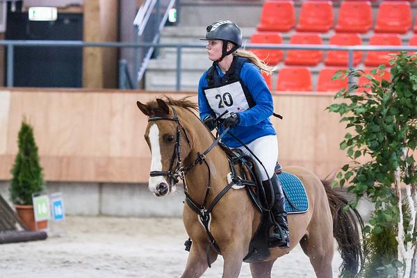 B Horses Indoor Ermelo 2015