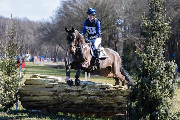 M Horses Alphen-Chaam 2016