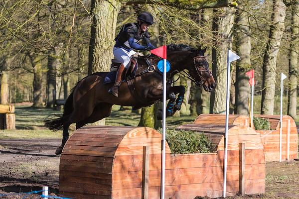 L Horses Maarsbergen 2016
