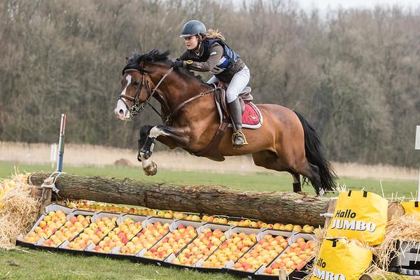 B Ponies Amsterdamse Bos 2016