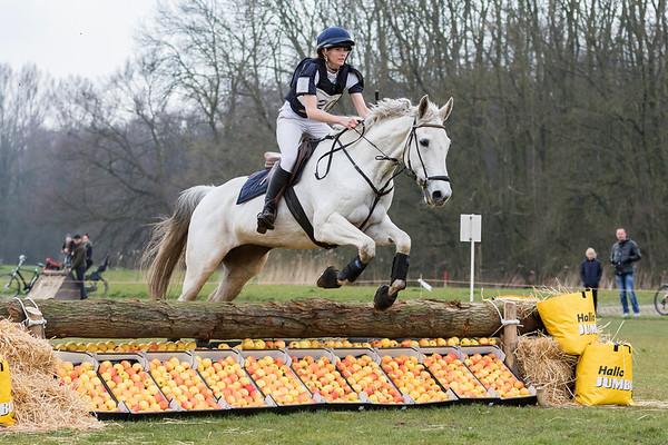 L Horses Amsterdamse Bos 2016