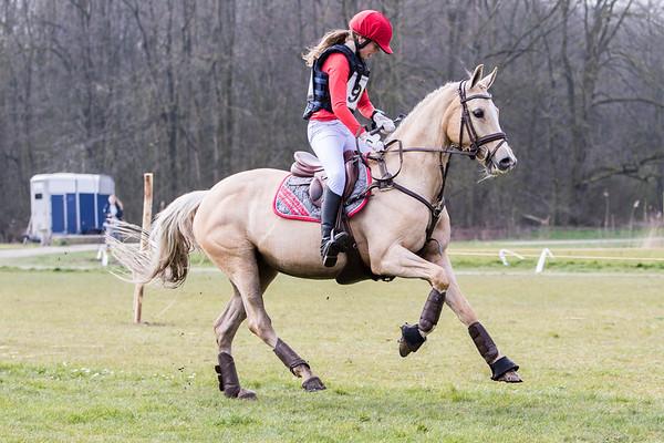 L Ponies Amsterdamse Bos 2016