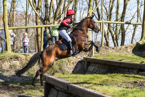 Z Ponies Etten-Leur 2016