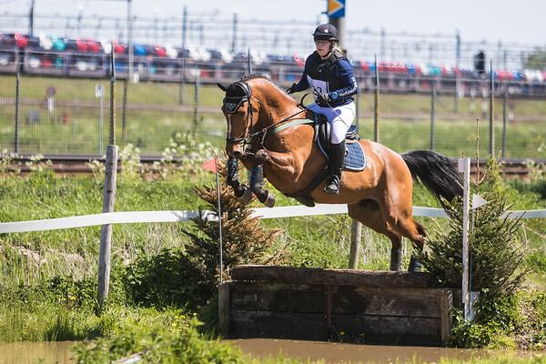 L Horses Heerjansdam 2016