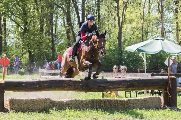 L Horses Castenray 2016