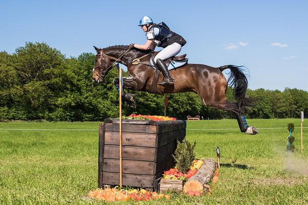 M Horses Castenray 2016