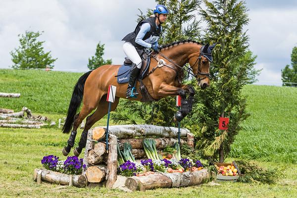 L Horses Hulsberg 2016