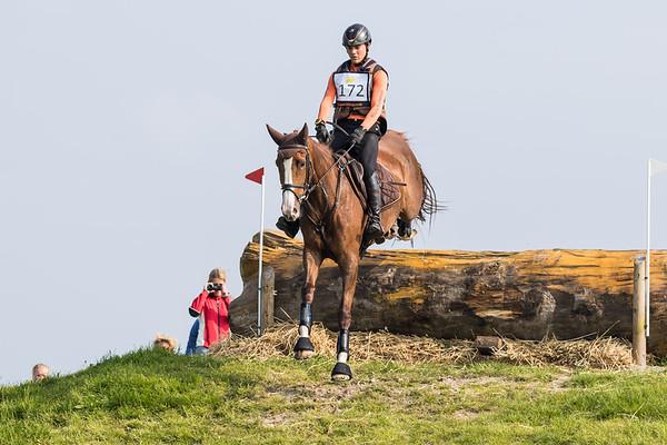 L Horses Clusius Event 2016