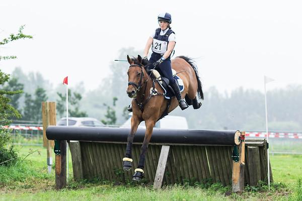 M Horses Vrouwenpolder 2016