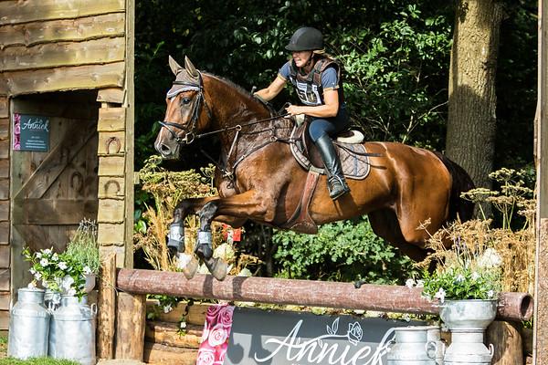 B Horses Norg 2016