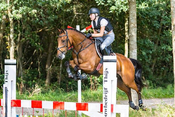 BB Horses Norg 2016