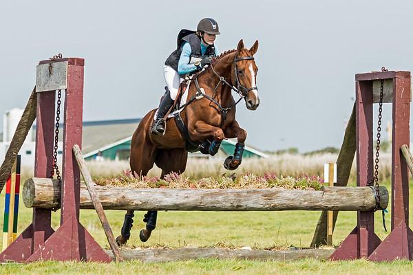 L Horses Texel 2016