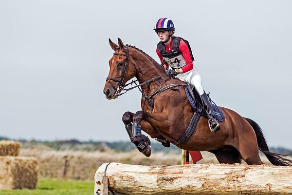 M Horses Texel 2016