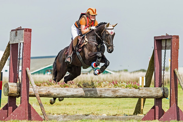 M Ponies Texel 2016