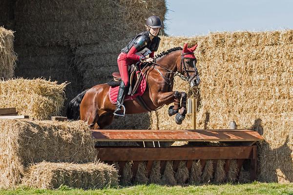 L Ponies Texel 2016