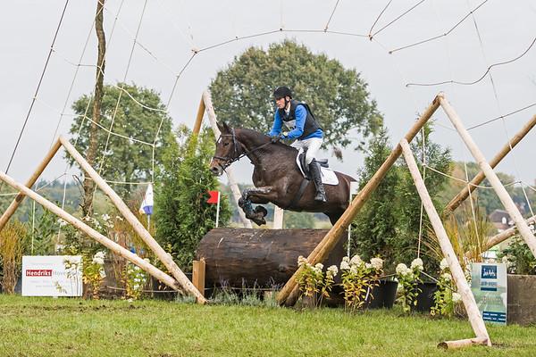 Z Horses Barchem 2016