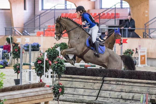 B Horses Indoor Ermelo 2017