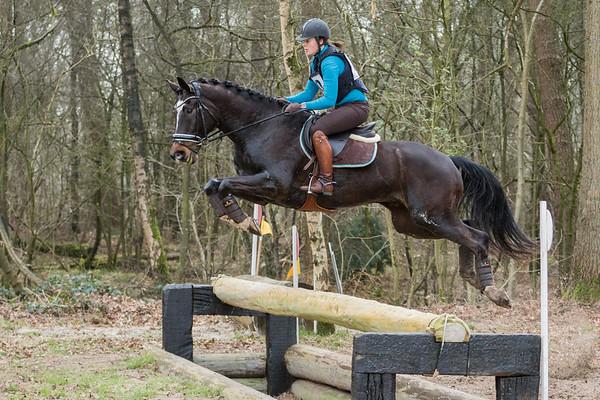B Horses Alphen Chaam 2017