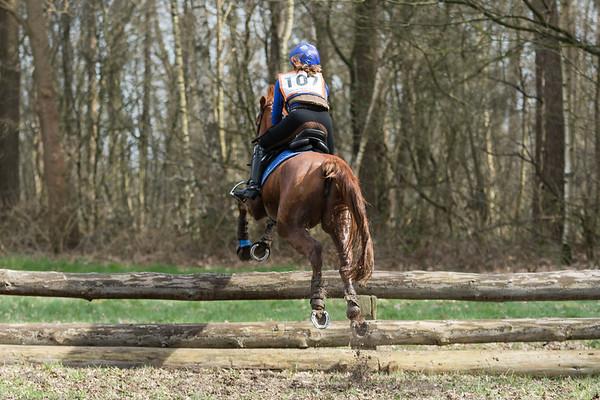L Ponies Alphen Chaam 2019