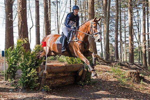 L Horses Westerbork 2017