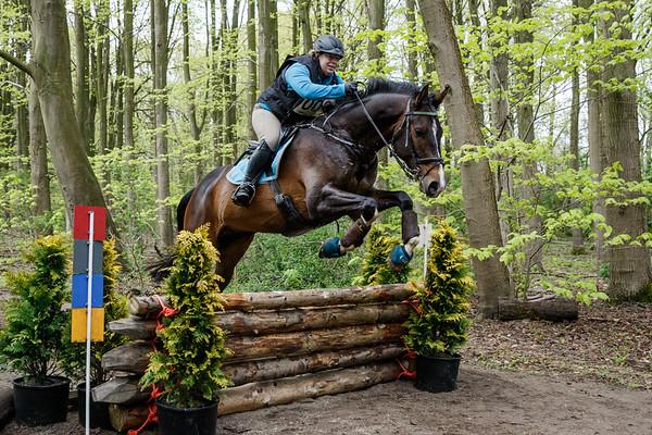 B Horses Amsterdamse Bos 2017