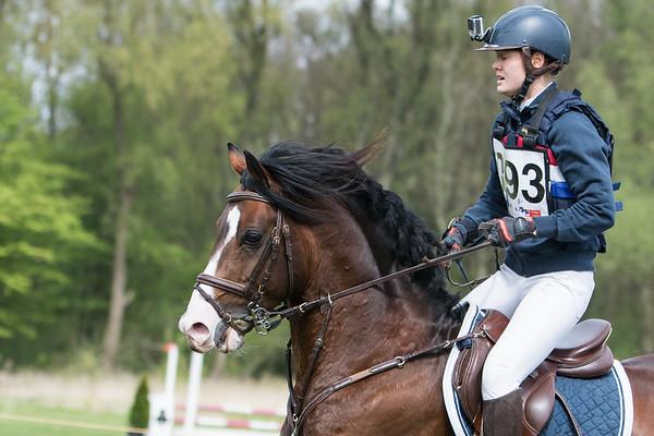 L Ponies Amsterdamse Bos 2017