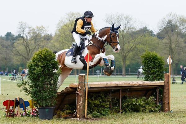 L Horses Kronenberg 2017