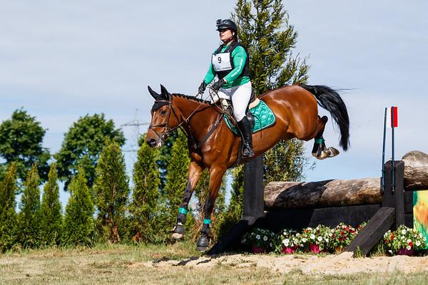 B Horses Hulsberg 2017
