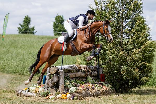 L Horses Hulsberg 2017