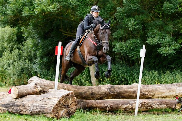 B Horses Vlietland 2017