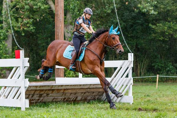 BB Horses Vlietland 2017