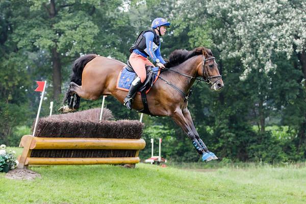 B Horses Renswoude 2017
