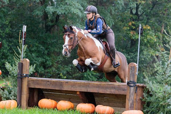 L Ponies Ysselsteyn